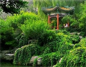 Китайский сад на участке своими руками