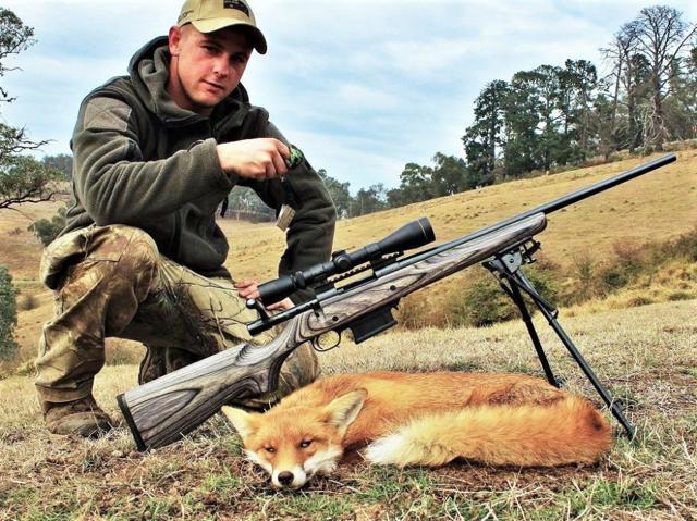 Манок для охоты на лису сделанный своими руками