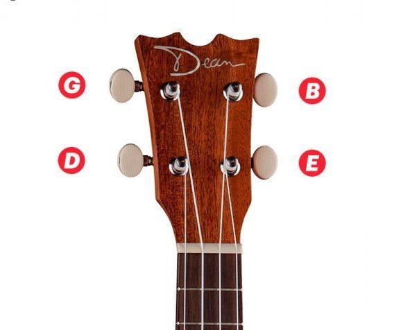 Гавайская гитара-укулеле своими руками