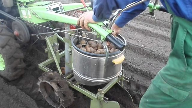 Картофелесажалка для мотоблока своими руками