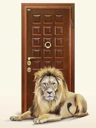 Дверь из нержавейки своими руками