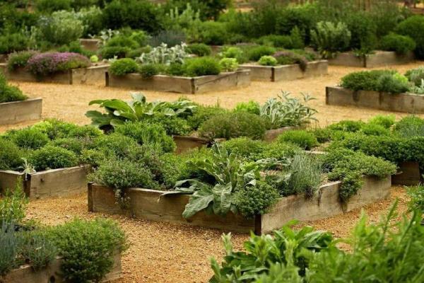 Вертикальный огород и грядки своими руками