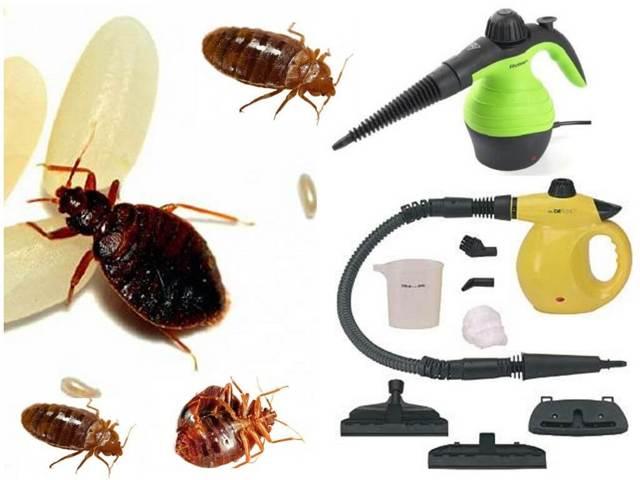 Парогенератор для инсектицидов своими руками