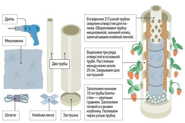 Гидропоника для выращивания клубники своими руками