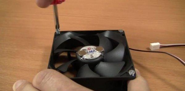 Как сделать магнитную бесконтактную мешалку своими руками