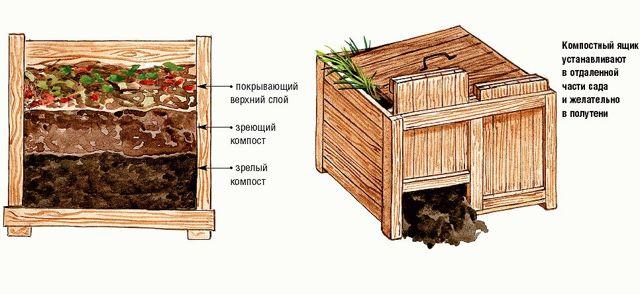 Как правильно сделать компостную кучу своими руками