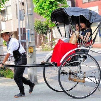 Велорикша на электротяге своими руками (made in india)