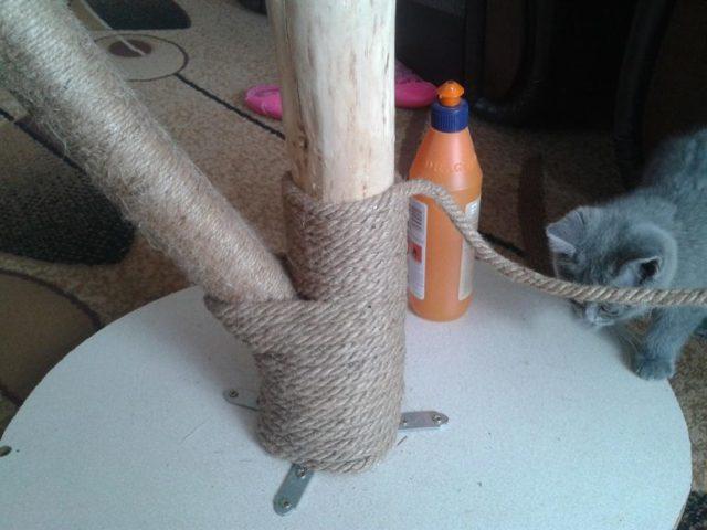Домик, когтеточка для домашнего питомца своими руками