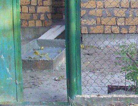Перемычка над оконными и дверными проёмами своими руками