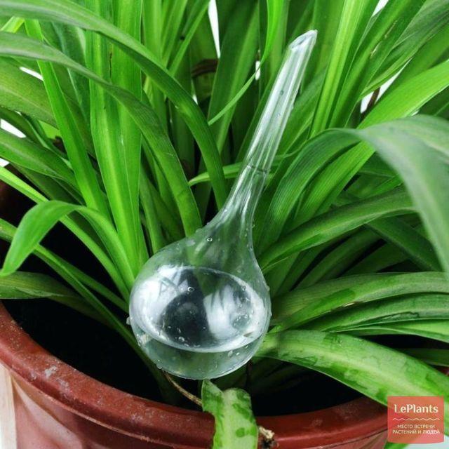 Умный подвес для растений с индикатором полива своими руками