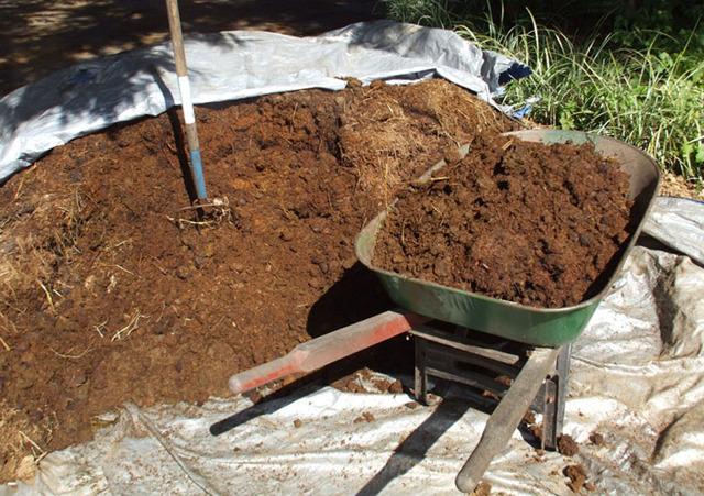 Биогазовая установка своими руками - газ из отходов