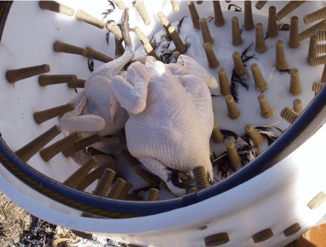 Перосъемная машина своими руками
